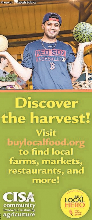 Discover the Harvest