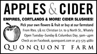 Apples & Cider
