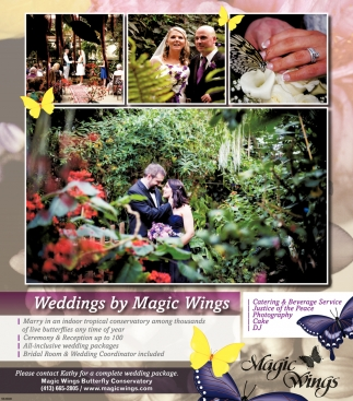 Weddings by Magic Wings
