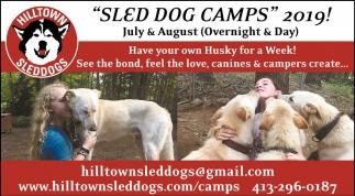 Sled Dog Camps