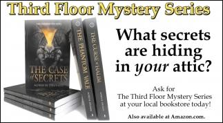What Secrets are Hiding in You Attic?